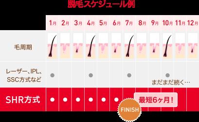 strength_img_02